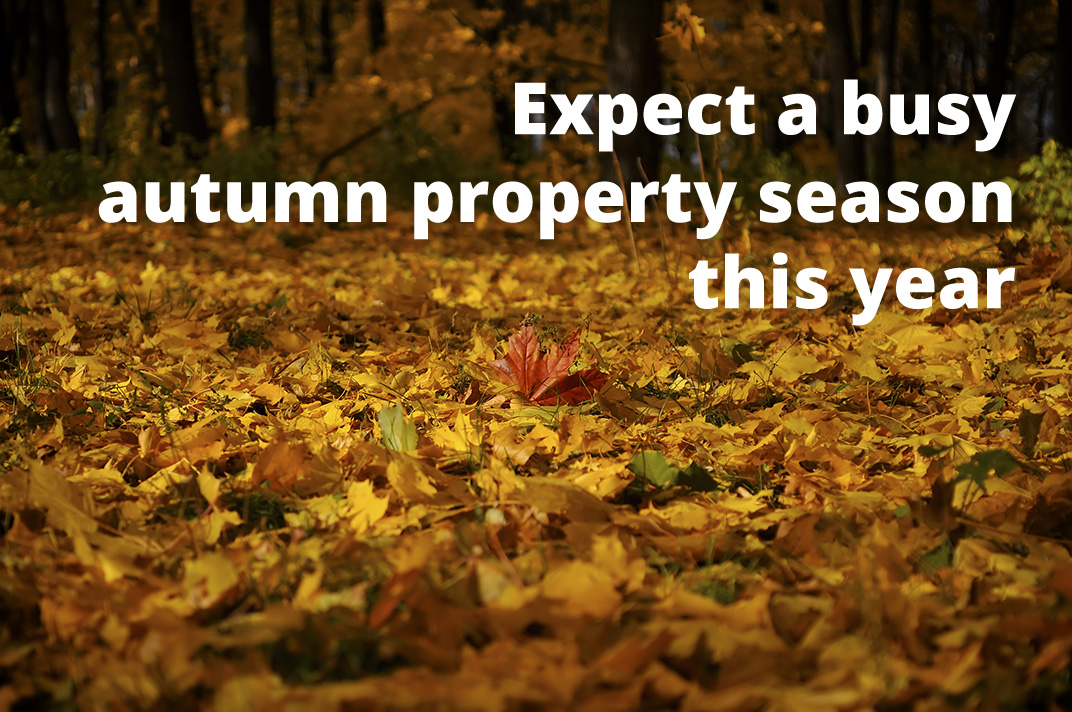 Expect a busy autumn property season this year